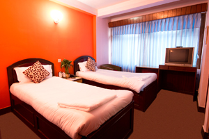 Hotel Thamel Lily Double Bed
