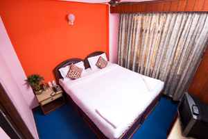 Hotel Thamel Lily Single Bed